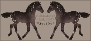2901 StarLite Foal Design Holder by HoT-Stables