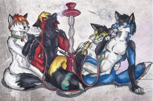 Steaming Furs by StarlightsMarti
