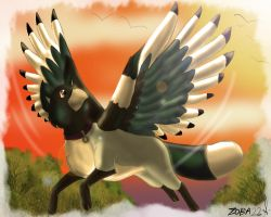 Flying at sunset by Zoba22