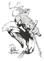 SpiderMan by edbenes inked by gz12wk