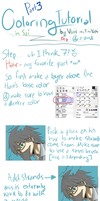 Coloring Tutorial Part 3 of 3 by Voiii