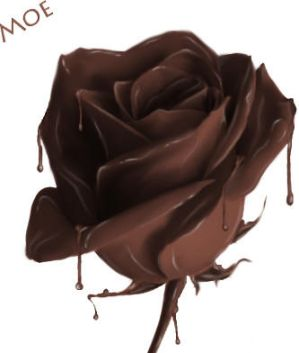 Images Of Chocolate Flowers Both of course   chocolates