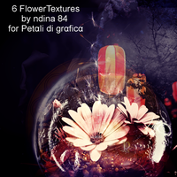 Flower texture pack by ndina84
