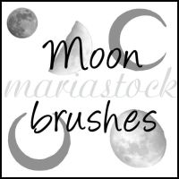 moon brushes by mariastock