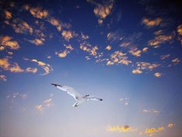 Over the world by Marlenne0601