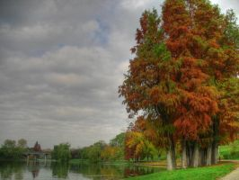 Autumn in Bucharest by dianora