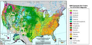 Dominant Soil Orders Map of the USA-LG- by FringerFrankie