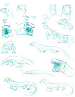 Komodo Dragon Study-Concepts by AuldBlue