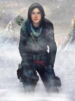 Rise of the Tomb Raider Photoshop by Shyngyskhan