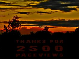 Thanks 2500 by hawkeye280