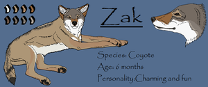 Zak Digital Reference by galianogangster
