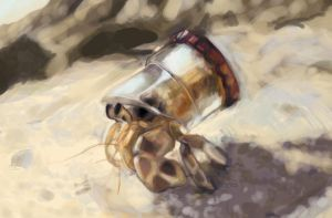 Hermit Crab Speed Paint by Tillette