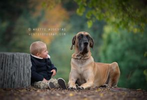 Moments by Hestefotograf