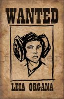 princess leia by mjfletcher