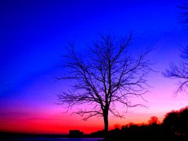 if i could paint the sky by Lishk