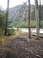 Crow's Pass Big River Forest 1 by prints-of-stock