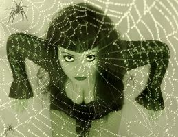 Caught In Her Web Of Lies by VisualPoetress