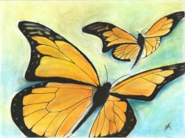 Butterfly by Adriana2805