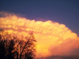 Rose Colored Sky by nelsonpray