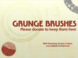 Grunge Brushes by digitalrevolutions