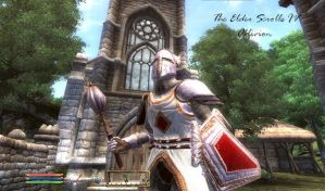 The Elder Scrolls IV Oblivion by jpbluewoo