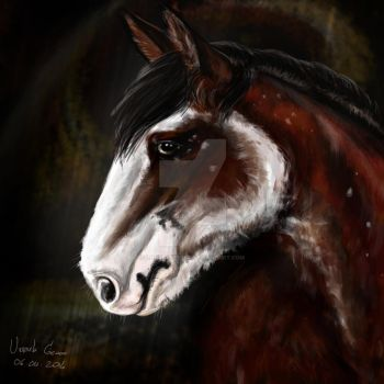 Clydesdale by LonelyFerret