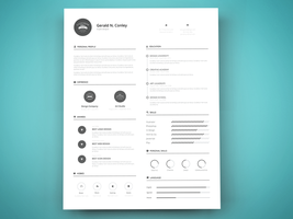Freebie - Print Ready Resume Template by GraphBerry