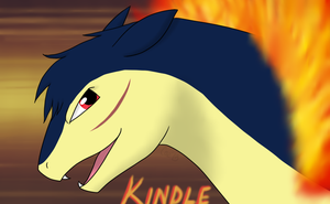 Kindle by Norjack