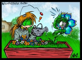 10. Garden by spookydoom