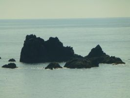 Lizard Point: View 33 by yaschaeffer