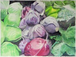 Cabbages by alanbecker
