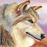 realistic wolf...finally by silvermoonfox