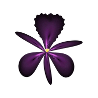 fractal Stock - Dark  orchid by rockgem