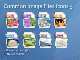 Common Image File Icons 3 by docmiller