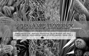 6 Pack Organic Texture Images by NickiStock