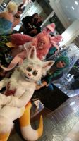 Sakuracon 2014: OMg Sylveon an Glaceon by MystikMeep