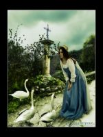Talking to the Swans by FairieGoodMother