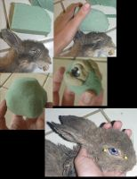 Bunny head form tutorial by Tricksters-Taxidermy