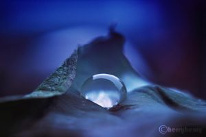 sleepy droplet.... by herryhewy