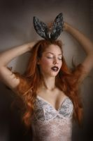 Rabbit Heart 1 by iomaSaty