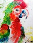 Parrot by Little-Tin-Soldier