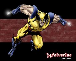 Wolverine by TheNass