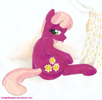 Cheerilee's Photo Shoot by TwilightFlopple