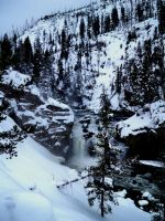 Winter in Yellowstone by Red-Wren