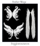 Feather Wings by froggiesresources
