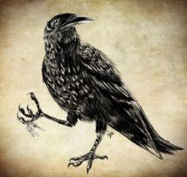 Bon Iver Crow by JTF3