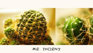 Mr. Thorny by Lucie-Lilly