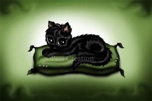 Cat on Pillow by PeziCreation