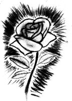 Rose (Black and White) by SingaWriter