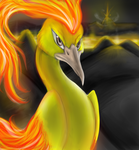 Moltres by Radiancy